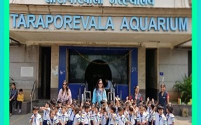 Field trip to Taraporewala Aquarium